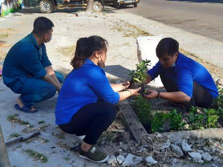 (ĐVTN trồng cây xanh tại các bồn cây)