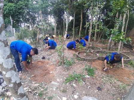ĐVTN tham gia trồng cây ăn quả hỗ trợ thanh niên tôn giáo