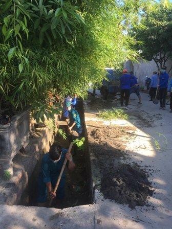 Tam Kỳ tổ chức chương trình Hành quân xanh